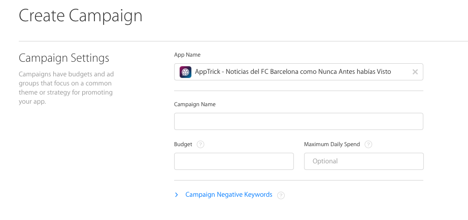 crear-campan%cc%83a-campaign-search-ads-app-store2