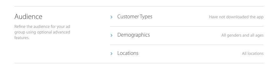 crear-campan%cc%83a-campaign-search-ads-app-store4